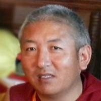 Nauki Dzogczen